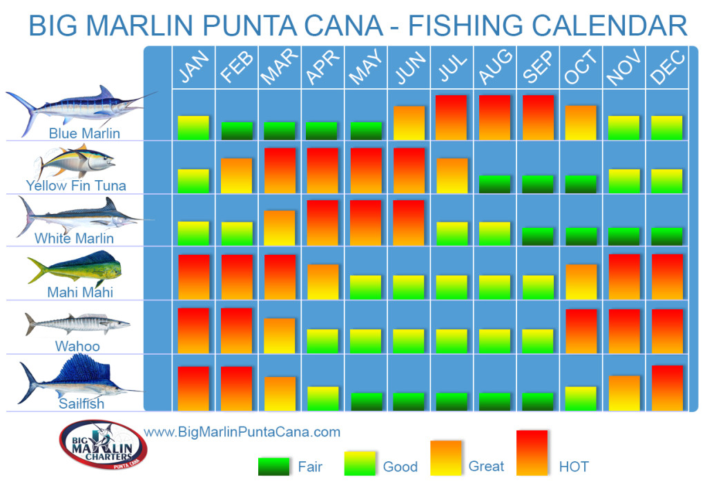 Fihing Calendar for fishing charters seasons Dominican Republic Punta Cana