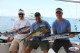 barracuda fishing with rods and reels