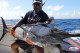 Fishinig tours for blue marlin Bavaro Punta Cana boat Fortuna