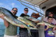 Best season for catch big Mahi Mahi in Bavaro new report deep sea fishinig Punta Cana