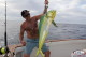 Very big mahi mahi in Punta Cana depp sea fishinig