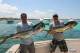 mahi mahi fishing april punta cana majestic elegance report best time catch fish
