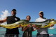 mahi fishing in Punta Cana in February season for big mahi mahi biggest size dorado catch winter