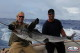 White marlin report Punta Cana fishinig