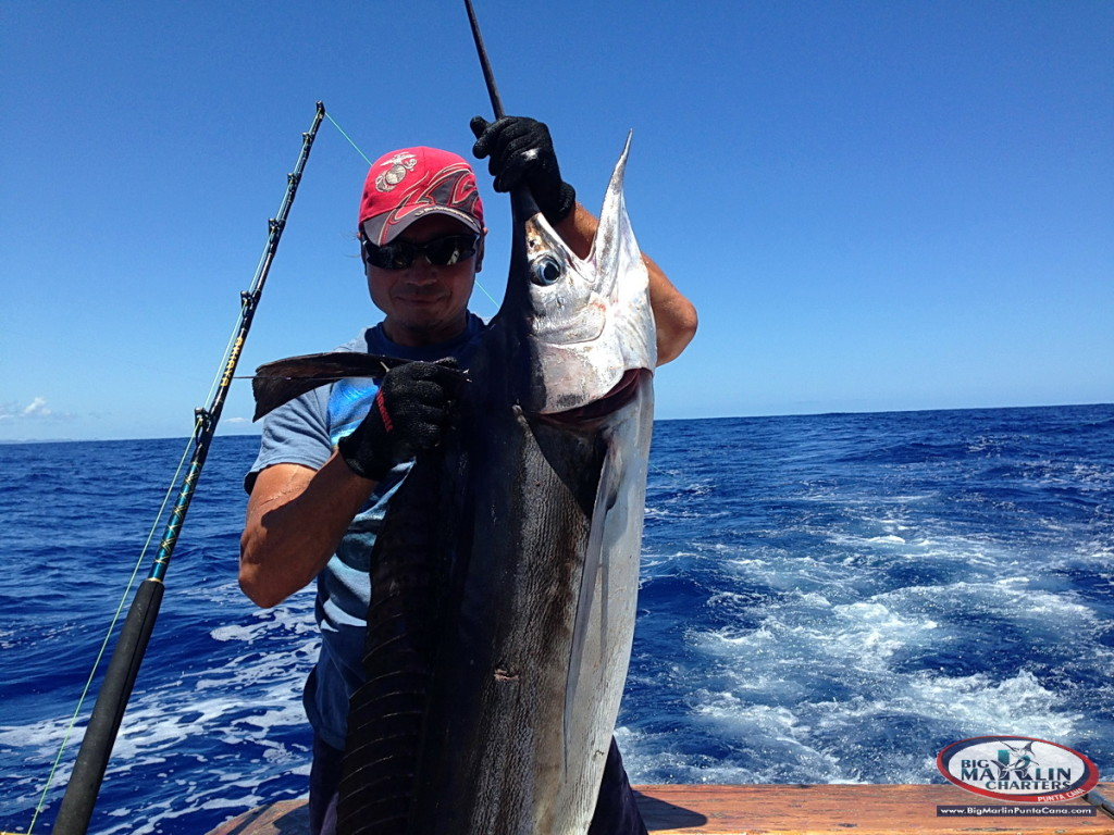 Photo and video deep sea fishing punta cana deep sea for Party boat fishing near me
