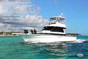 New Fishing boat Sherlock 39ft deep sea fishing Punta Cana