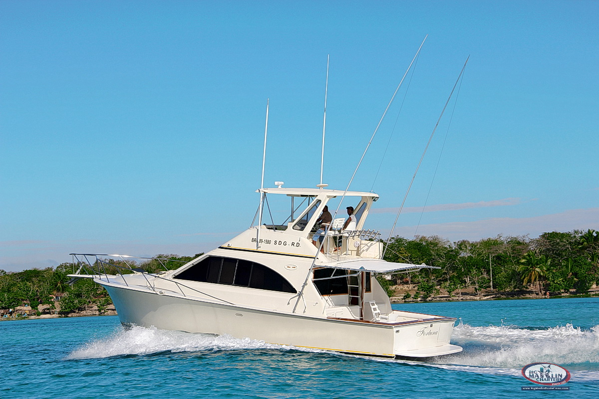 Deep sea private fishing charters deep sea fishing for Saltwater fishing charters