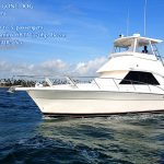 new boat Gone Dog for marlin fishing charter