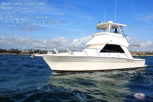 best fishing boat Gone Dog 37 feet Punta Cana