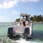 catamaran for speafishing Bavaro , Punta Cana reef spearfish