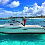 inshore catamaran grady white 26 feet in Punta Cana for bottom fishing