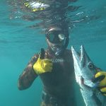 fishing speagun Punta Cana 2020 barracuda underwater