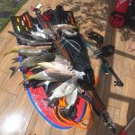 spear fishing eat restaurante Bavaro spearfishing tours